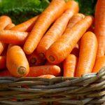 trattamenti benessere alle carote