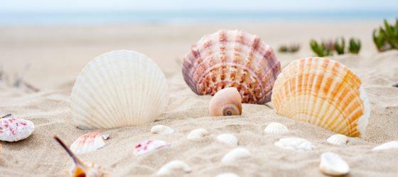 Trattamenti Benessere estivi da provare in Vacanza