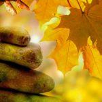 Trattamenti benessere ai profumi autunnali